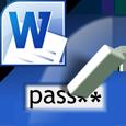 Word Password Recovery Lastic logo
